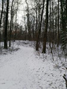 Sophro nature sous la neige Hélène Coutand